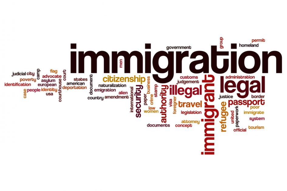 Immigration word cloud with Immigration by far the most prominent word