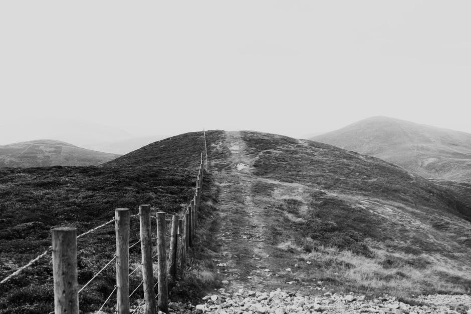 Black and white photo of wooden posts and wire cable fencing